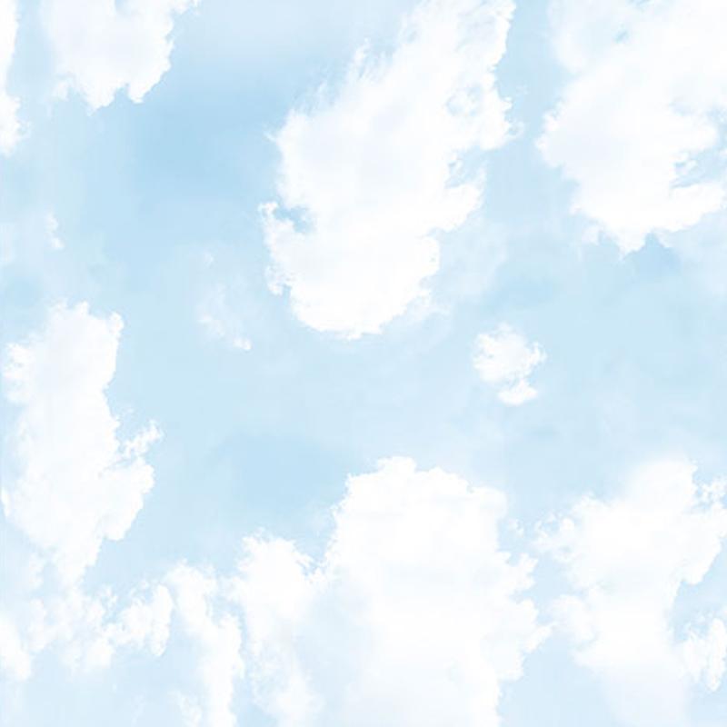 Панель пластиковая потолок Небо 04124 3000*2000